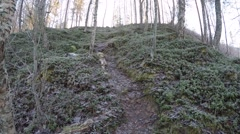 Beautiful forest and hill landscape in cold autumn frozen morning Stock Footage