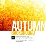 Abstarct autumn backgrounds Stock Illustration