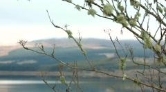 Autumn light, Clatteringshaws Loch Stock Footage