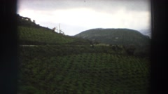 1958: viewing of a beautiful field out in nature. ITALY Stock Footage