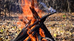 Flames Bonfire Stock Footage
