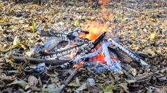 Bonfire burn out Stock Footage