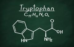 Structural model of Tryptophan Stock Photos