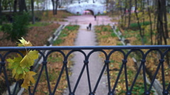 Lovers walk in the autumn Park Stock Footage