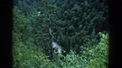1958: watching nature, forrest and green valley Stock Footage