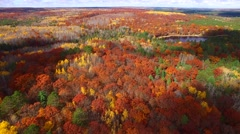 Amazing Autumn scenery, forests with lake, Fall colors Stock Footage
