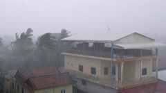 torrential rain, high winds blowing coconut trees and houses over Stock Footage
