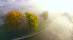 Colorful Autumn trees isolated on a field of sunlit fog Stock Footage