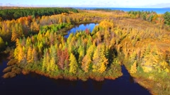 Amazing Autumn scenery, forests with lake, Fall colors, Aerial view Stock Footage