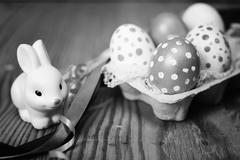 Monochrome eggs and bunny Stock Photos