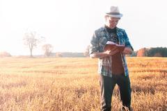 Man in nature autumn field wheat Stock Photos