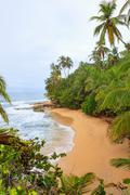 Idyllic beach Manzanillo Costa Rica Kuvituskuvat
