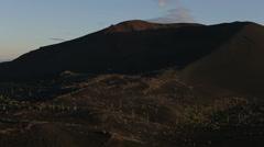 Dead Forest near volcanoes Stock Footage