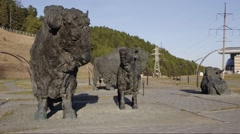 Samarovsky outlier. Archeopark. A herd of bison. Stock Footage