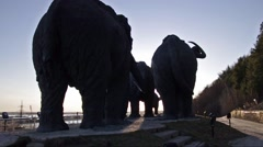 Samarovsky outlier. Archeopark. A herd of mammoths. Stock Footage