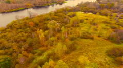 Aerial View. Golden Autumn flying over river near yellow tree. Stock Footage