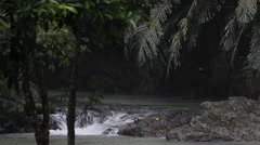 Small river in Tabin Wildlife Reserve Stock Footage
