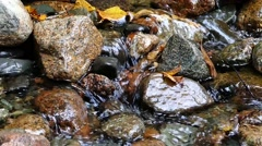 Crystal clear water stream Stock Footage