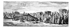 Beached whale. - Drawing Bocourt, after a print of the collection Mouilleron, Stock Illustration
