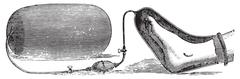 An apparatus for the application of oxygen on a limb gangrene, vintage engrav Stock Illustration