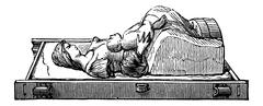Mould, vintage engraving Stock Illustration