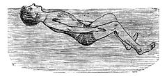 Back Float with Flutter Kick, vintage engraved illustration Stock Illustration