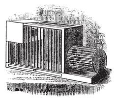 Rat cage vintage engraving Piirros