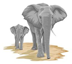 Vector of elephant with calf. Stock Illustration