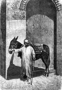 Vehicles of the great Sahara. The donkey driver is usually a beautiful negro, Stock Illustration