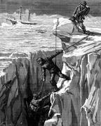 Wintering in the frigid seas. thus accomplishes this rescue could cost the li Stock Illustration