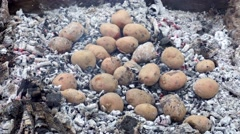 Baked potato in a fire Stock Footage