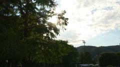 Summer evening sun garden tree view 4k italy Stock Footage