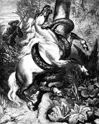 Beautiful horse was chained to a tree trunk by a snake, vintage engraving. Stock Illustration