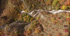 A vertical aerial footage of an unspoiled nature, autumn season and its colors Stock Footage