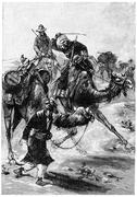 It's not on the camel need to type, vintage engraving. Piirros
