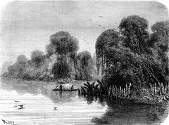 Tapichi mouth of the river, vintage engraving. Stock Illustration
