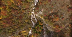 Aerial footage of an unspoiled nature, fall season and its colorful trees Stock Footage