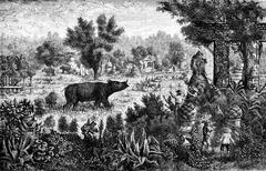 Meet a rhino in the ruins of Yeng Sen, vintage engraving. Stock Illustration