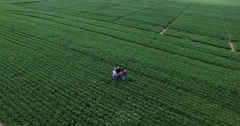 Aerial view of 2 farmers and consultant inspecting GMO soybean plants in field Stock Footage