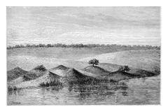 Termite Mounds in Southern Africa, vintage engraving Stock Illustration