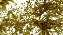 Big yelloe splashes in slow motion with DOF. tinted oil Stock Footage