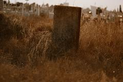 Ancient tombstone in dry grass at muslim cemetery in Astrakhan Russia Stock Photos