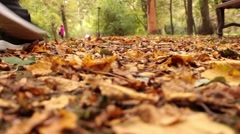 Feet sneakers walking on fall leaves Outdoor with Autumn season nature on Stock Footage