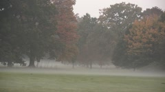 Misty Fog and Trees in the English Countryside in Autumn Time Stock Footage