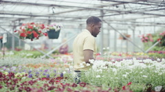 4K Workers in a garden center tending to flowering plants while customers browse Stock Footage