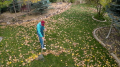 Aerial-Overhead view man in coveralls and red ball cap raking autumn leaves Stock Footage