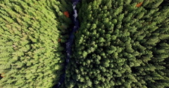 Aerial Looking Down on Wallace Falls Washington State Forested Land Stock Footage