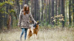 Girl With her pet - german shepherd - at autumn forest - the dog stuck out his Stock Footage