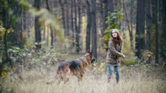 Young woman and her pet - german shepherd - walking on a autumn forest, girl Stock Footage