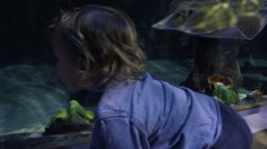 Little Boy Crawls Along Aquarium Wall, Huge Manta Ray Follows Along Next To Him Stock Footage